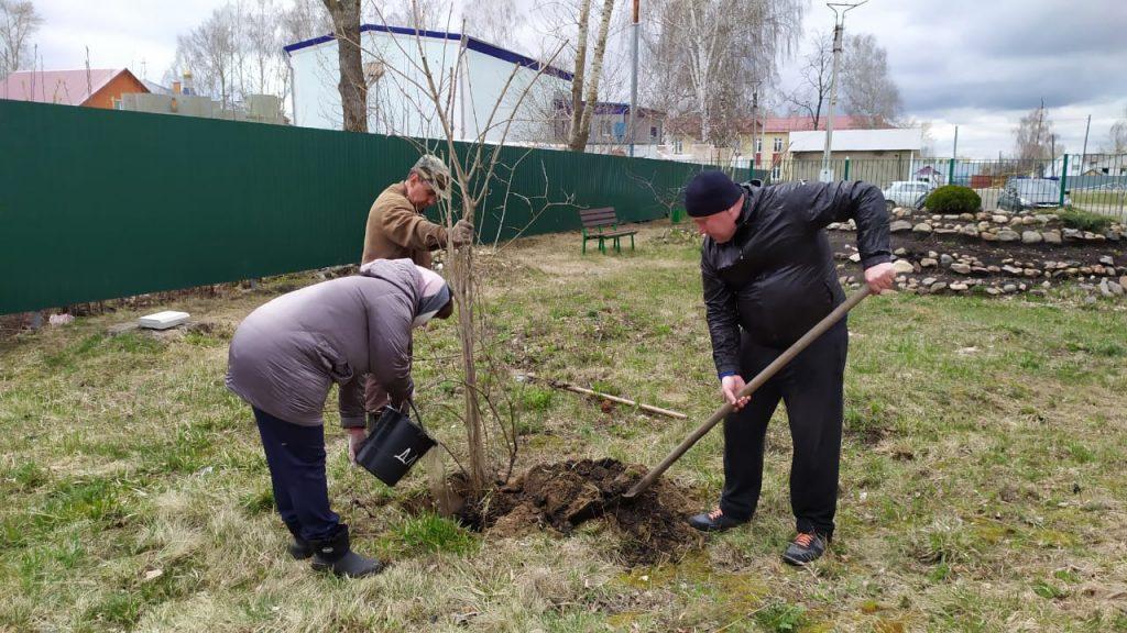 Сегодня работники культуры посадили саженцы в парке Культуры и отдыха.