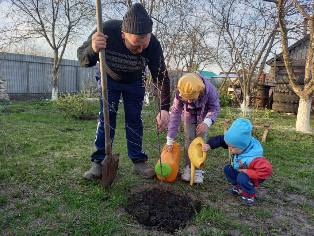 Семья Юдиных из села Шигонь присоединяется к Международной акции «Сад памяти»