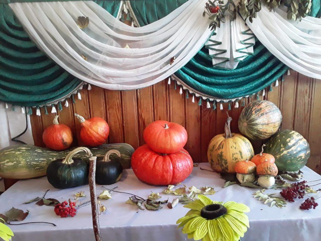 В Конопатском сельском клуб открылась брендовая выставка «Конопатская тыква».